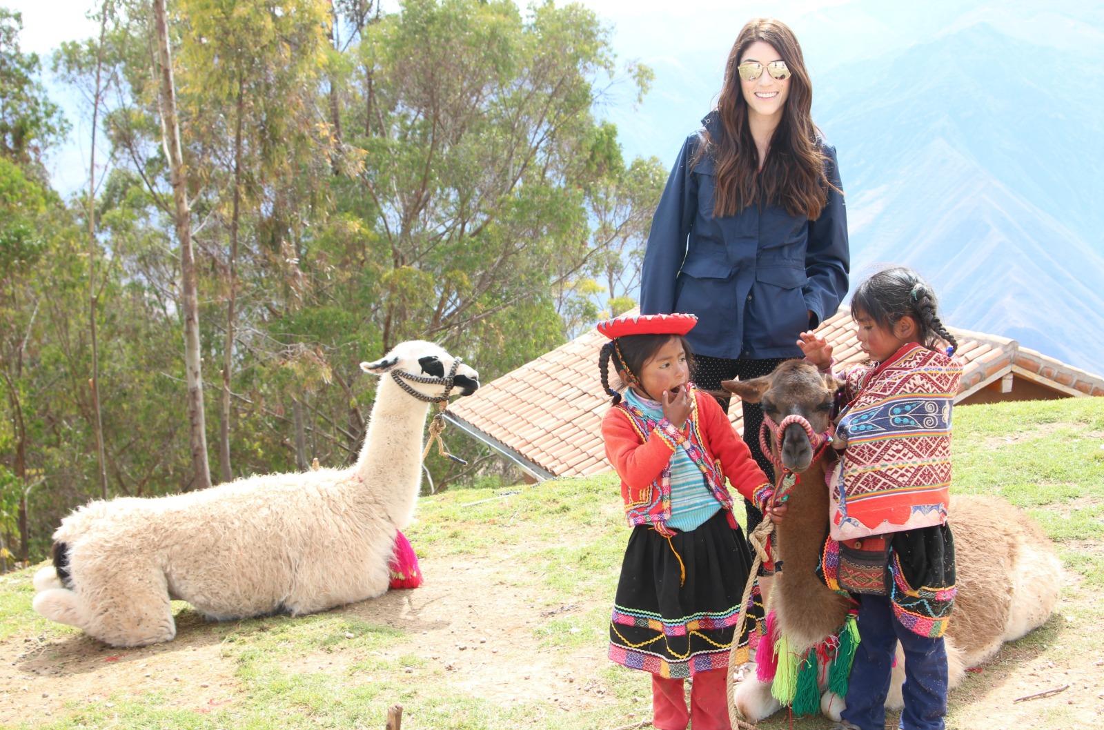 alpacas-in-peru
