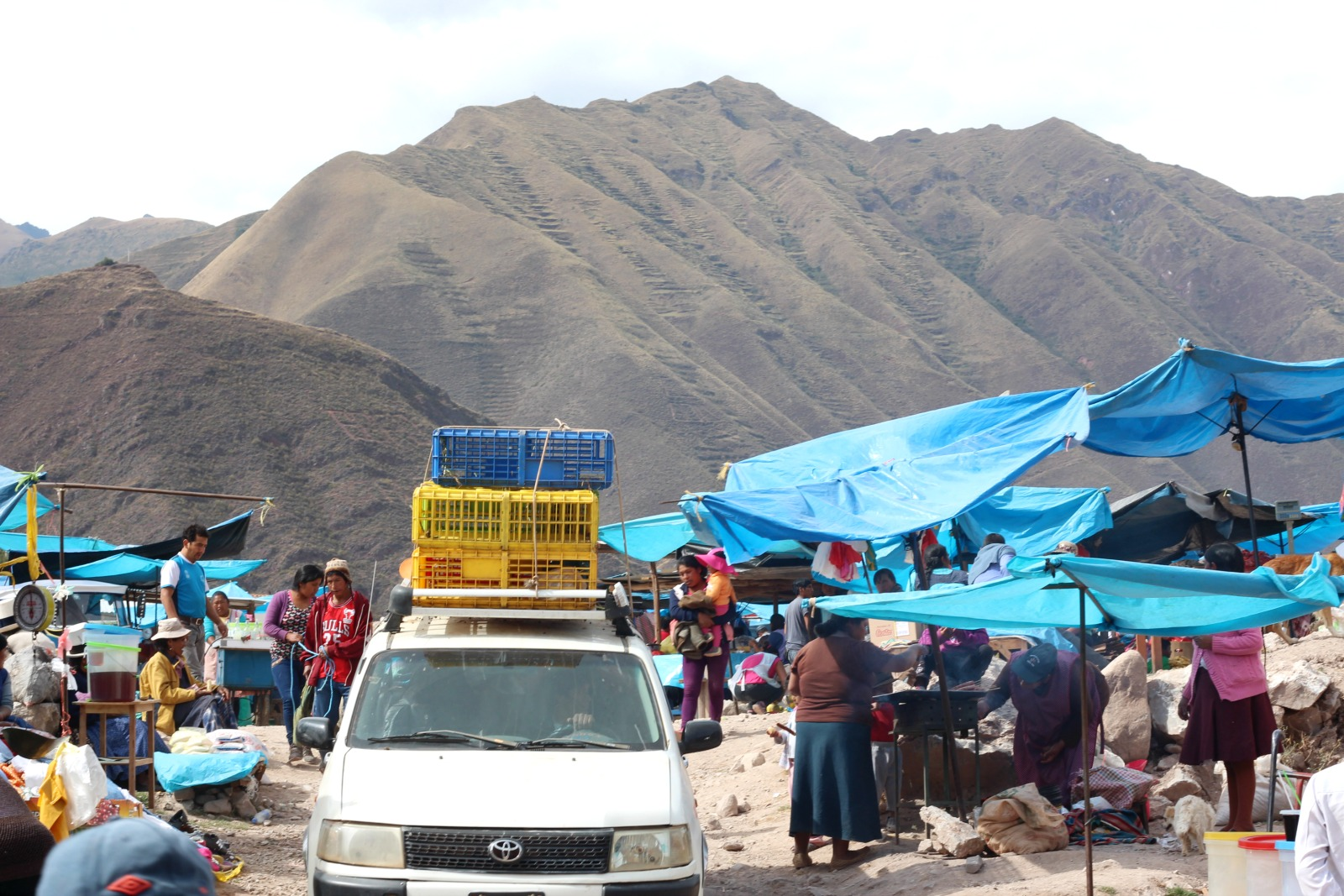 urubambaanimal-food-market
